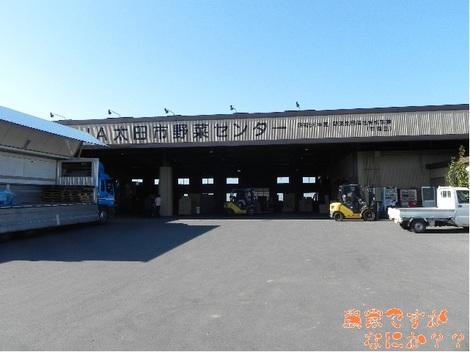 20111119 ねぎ共同選別調製施設.jpg