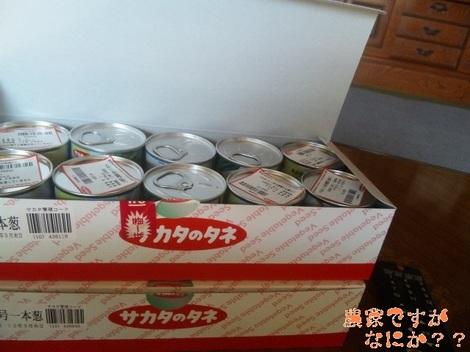 20120119 長ねぎ種.jpg