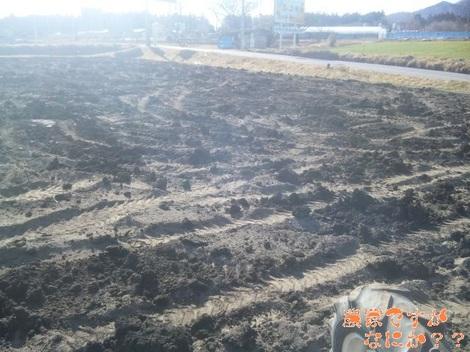 20120226 堆肥.jpg