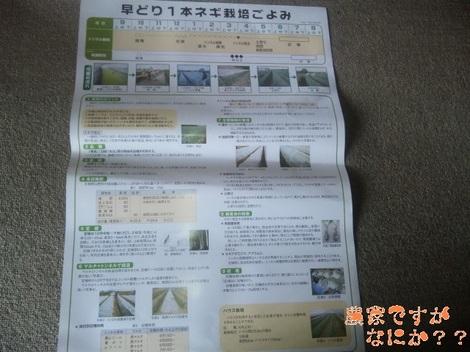 20120601 ポスター.jpg