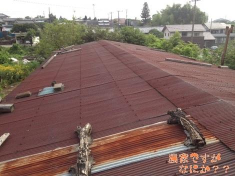 20120804 屋根葺き替え前.jpg