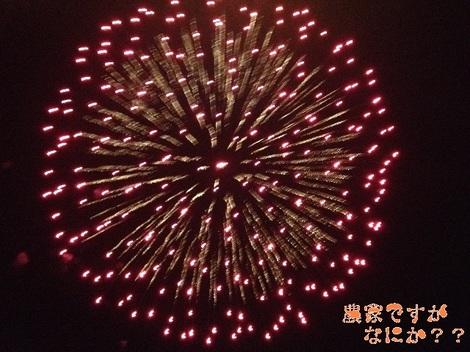 20120826 花火3.jpg