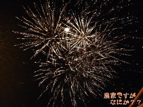 20120826 花火4.jpg