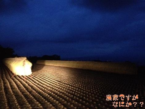 20120929 稲刈り3.jpg
