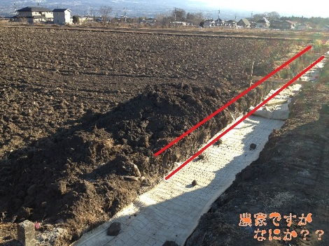 20130210石垣.jpg