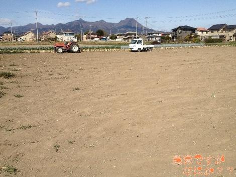 20130326 長ねぎ収穫終了.jpg