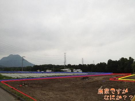 20130613ぶどう園.jpg