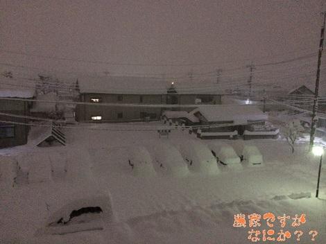 20140216雪.jpg
