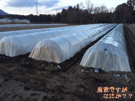 20150107トンネル.jpg
