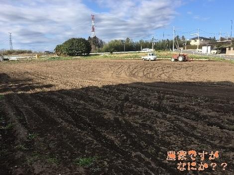 20160326収穫終了.jpg