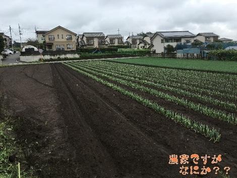 20160916新井6.jpg