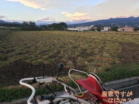 20161010稲刈り2.jpg