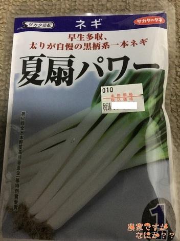 20170129長ねぎ.jpg
