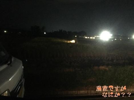 20191006稲刈り.jpg