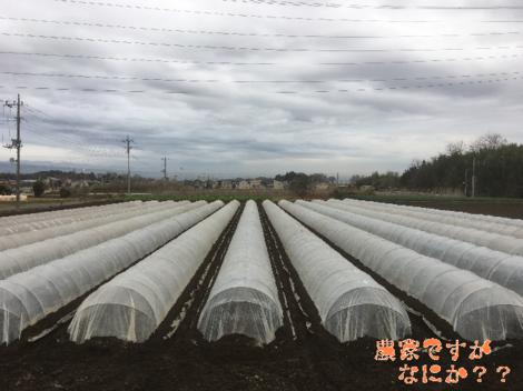 20191229トンネル4.png