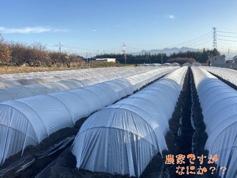 20201213トンネル4.jpg