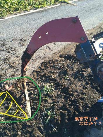 掘り取り機2.jpg