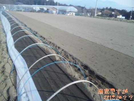 20120119 トンネル.jpg