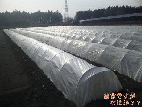 20120119 第2トンネル.jpg